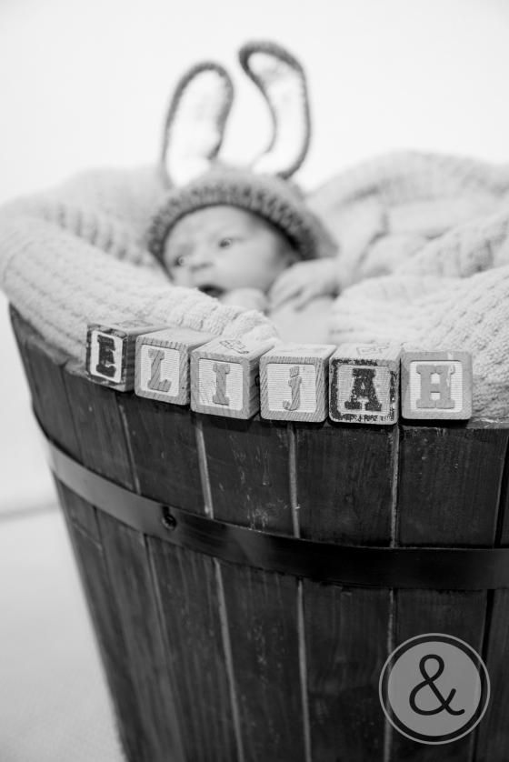 Baby Wells Blog 148